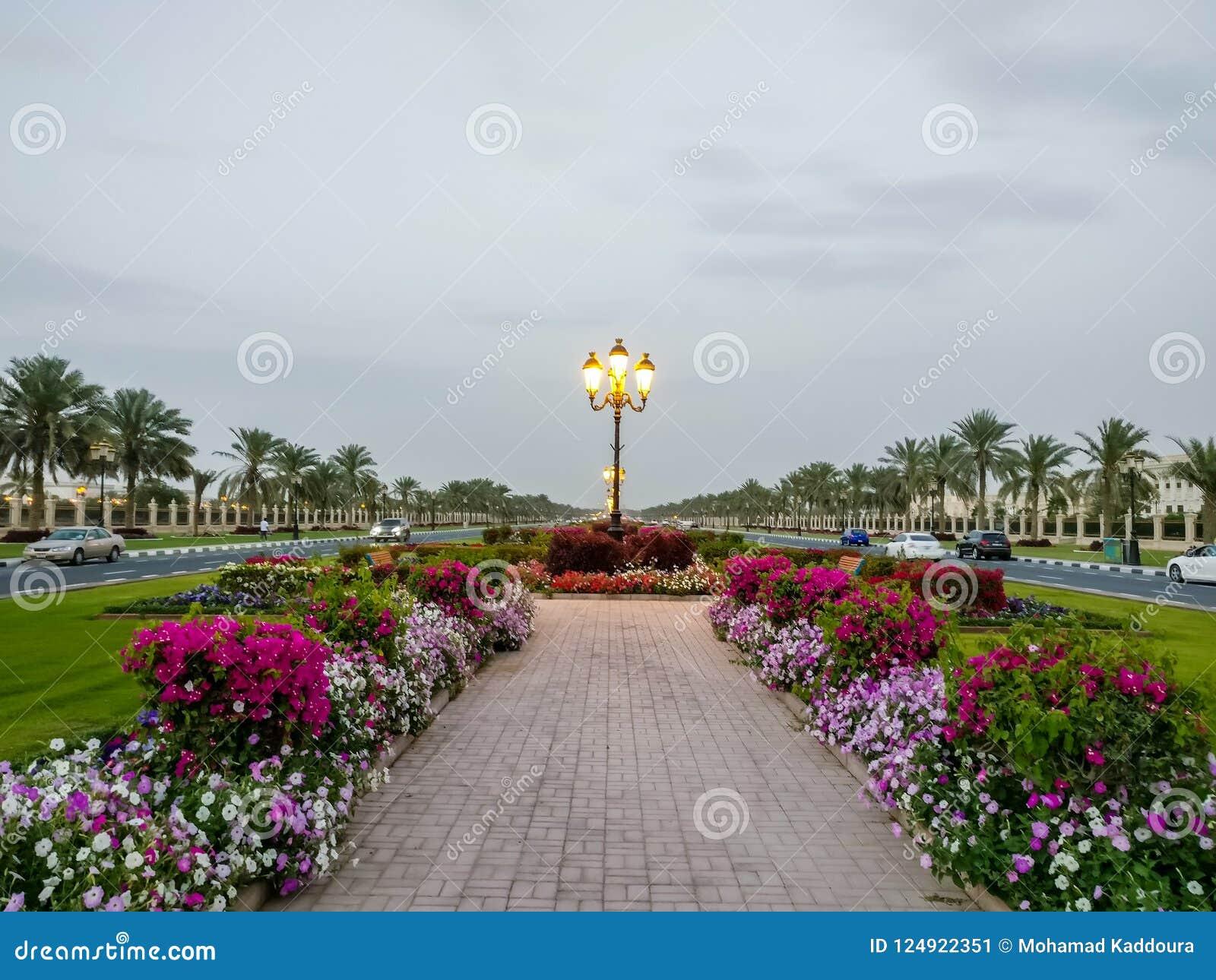 A universidade de estradas bonitas do terreno de Sharjah com decorações da flora, UAE