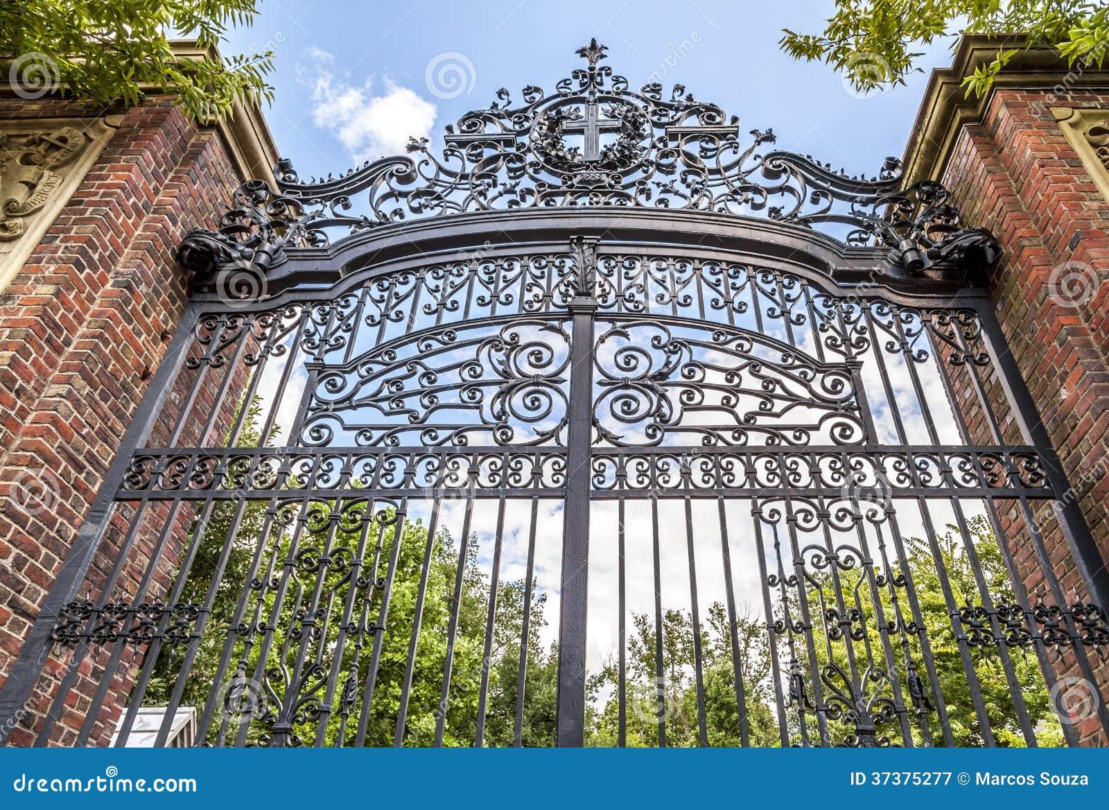 Groß Princeton Universität Setzt Fort Bilder - Entry Level Resume ...