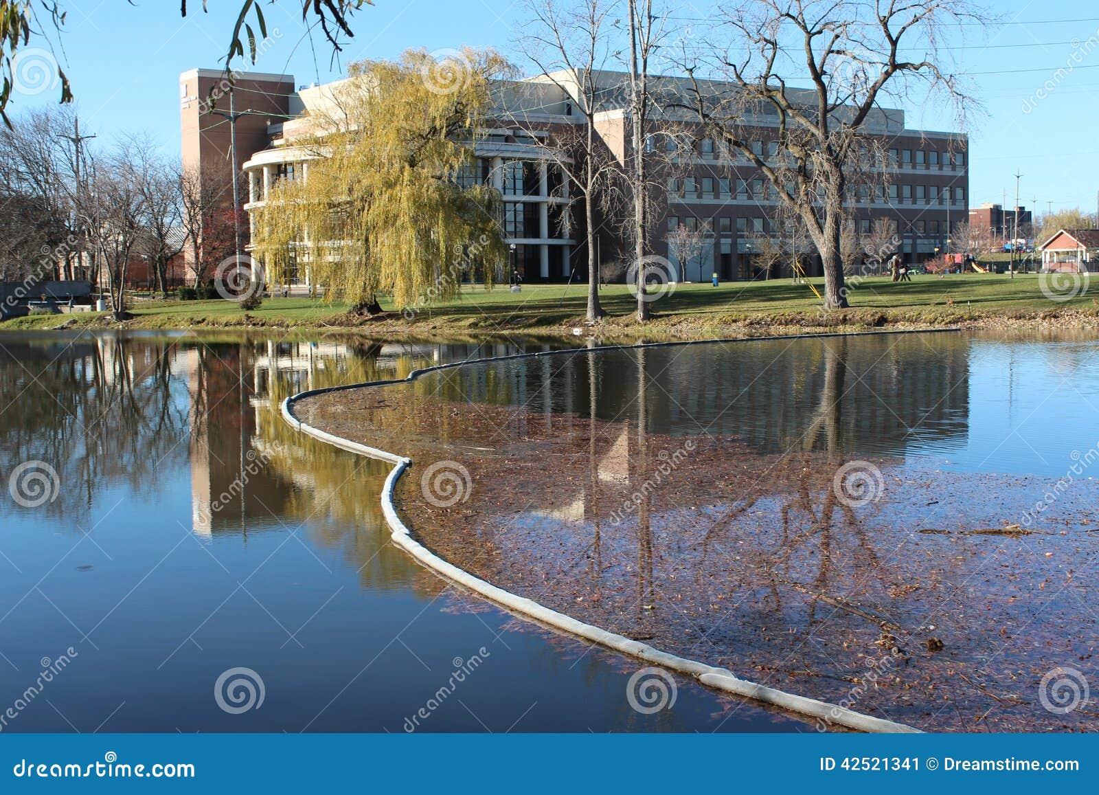 Université de Michigan-silex