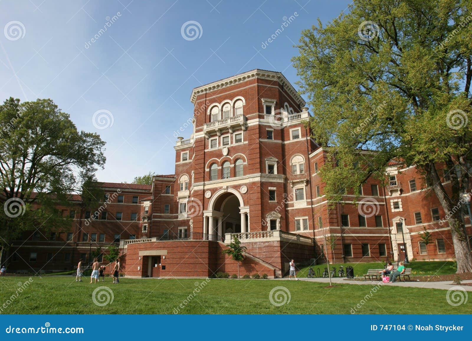 Universitetsområdeuniversitetar