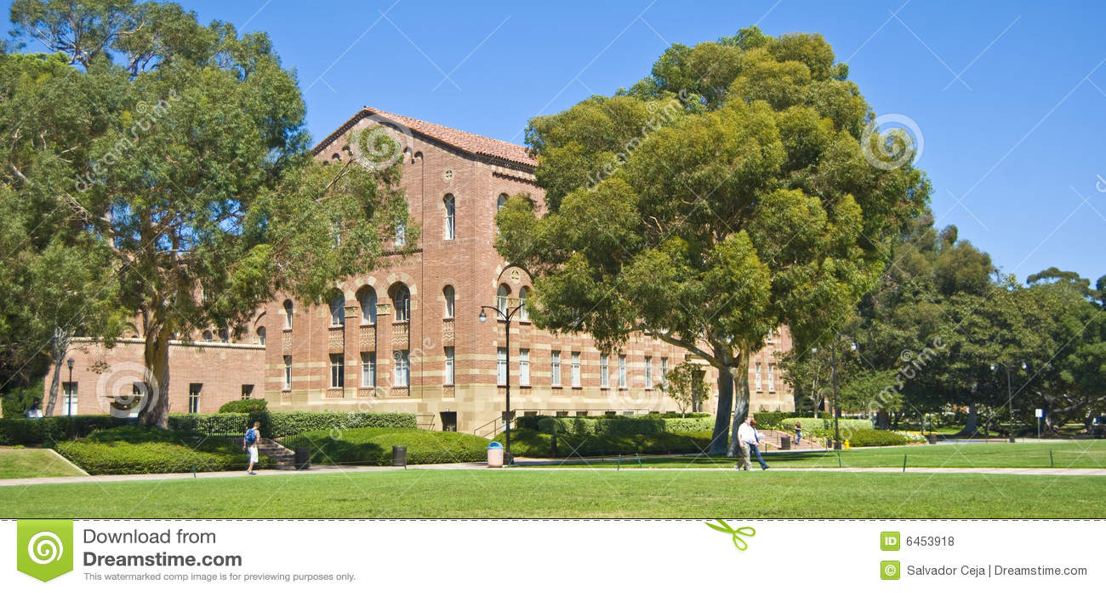 Uniwersytet kalifornii kampusu trawnika
