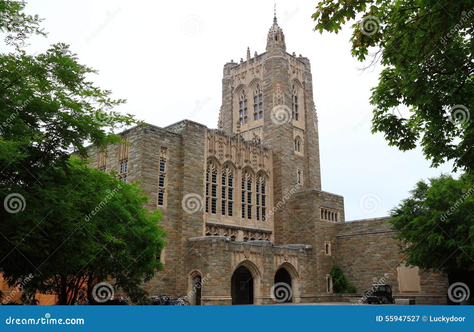 Uniwersytet Princeton biblioteka
