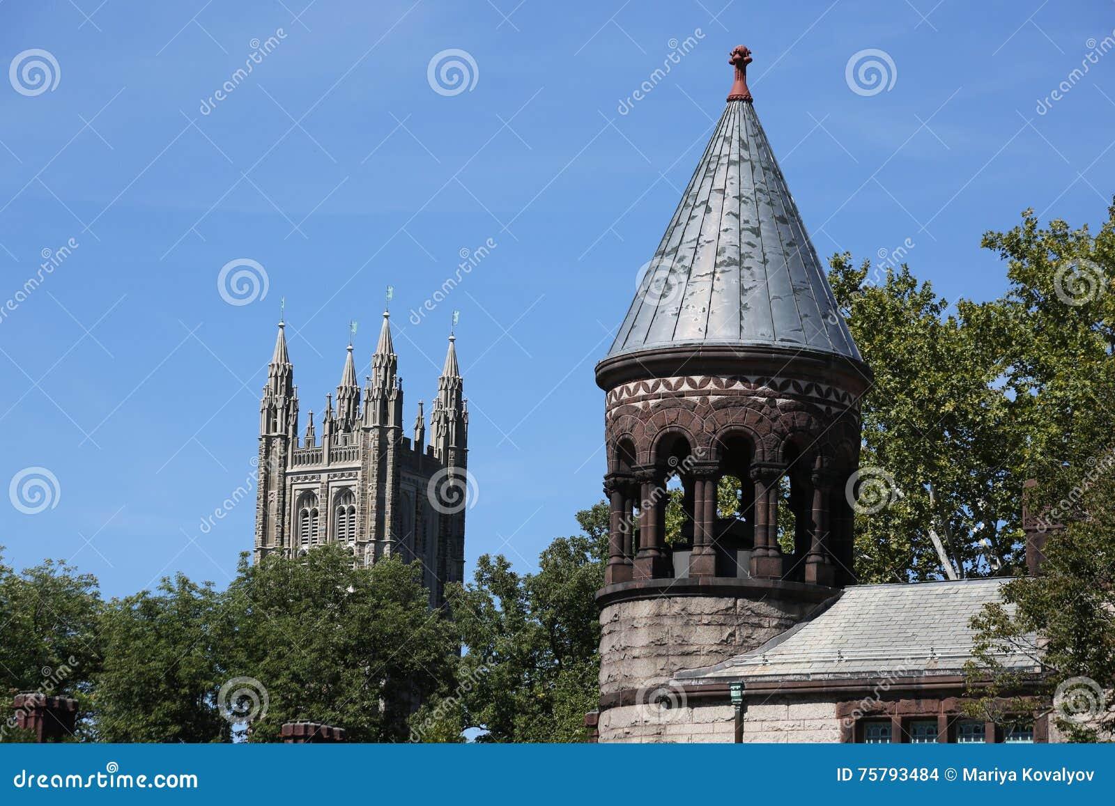 Uniwersytet Princeton w Nowym - bydło