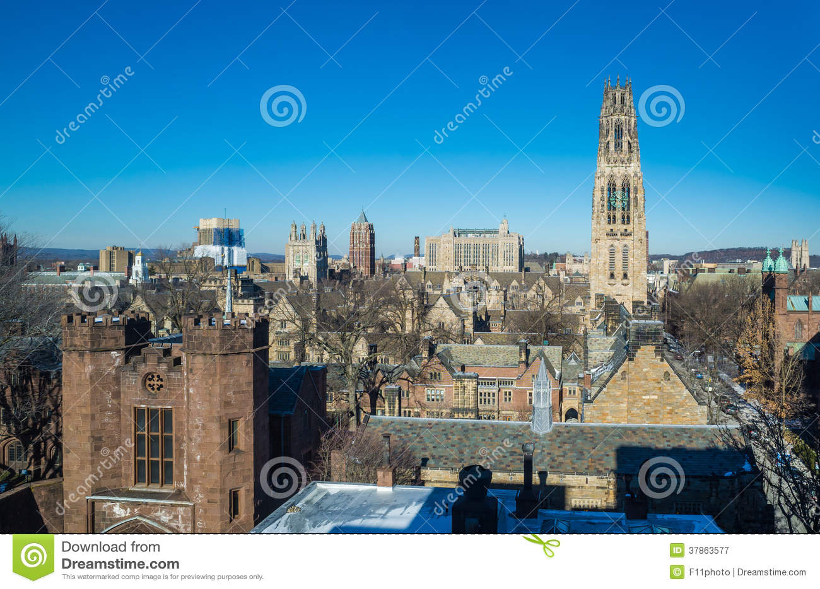 Uniwersytet Yale