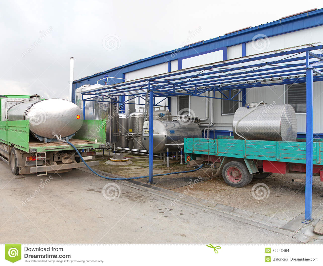 Milk Processing Unit – Business Plans and Reports