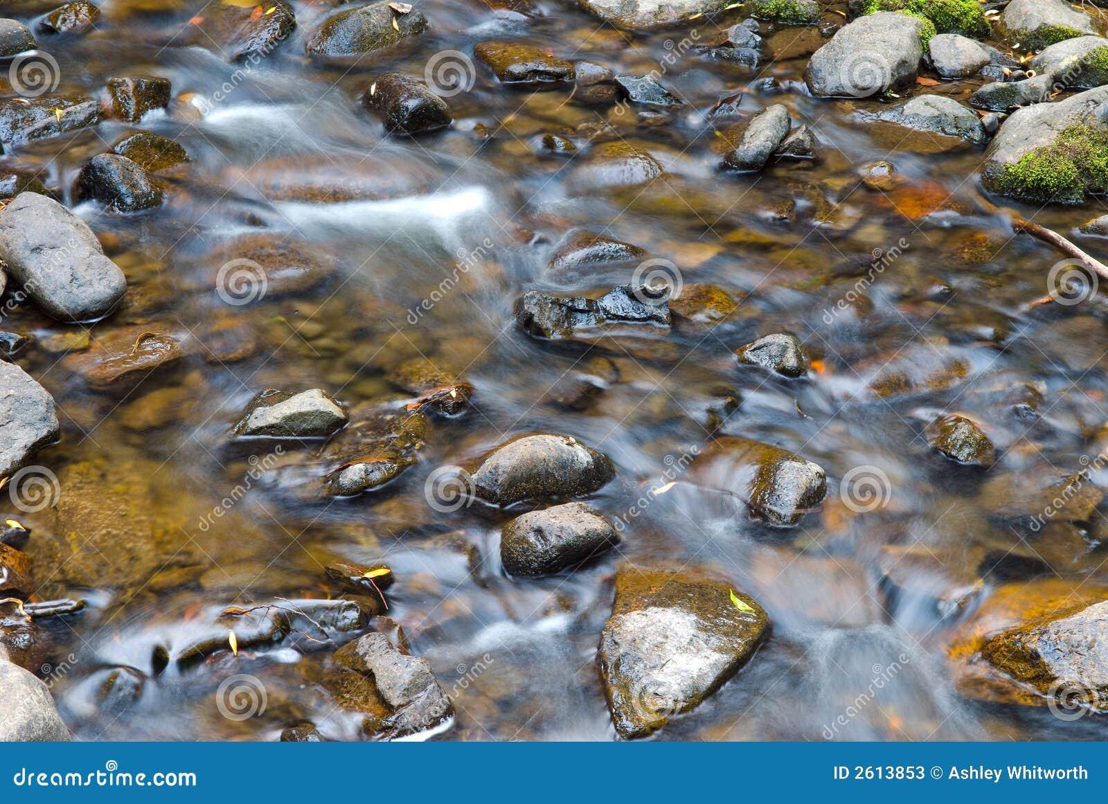 Unosi ponad wodą kamień