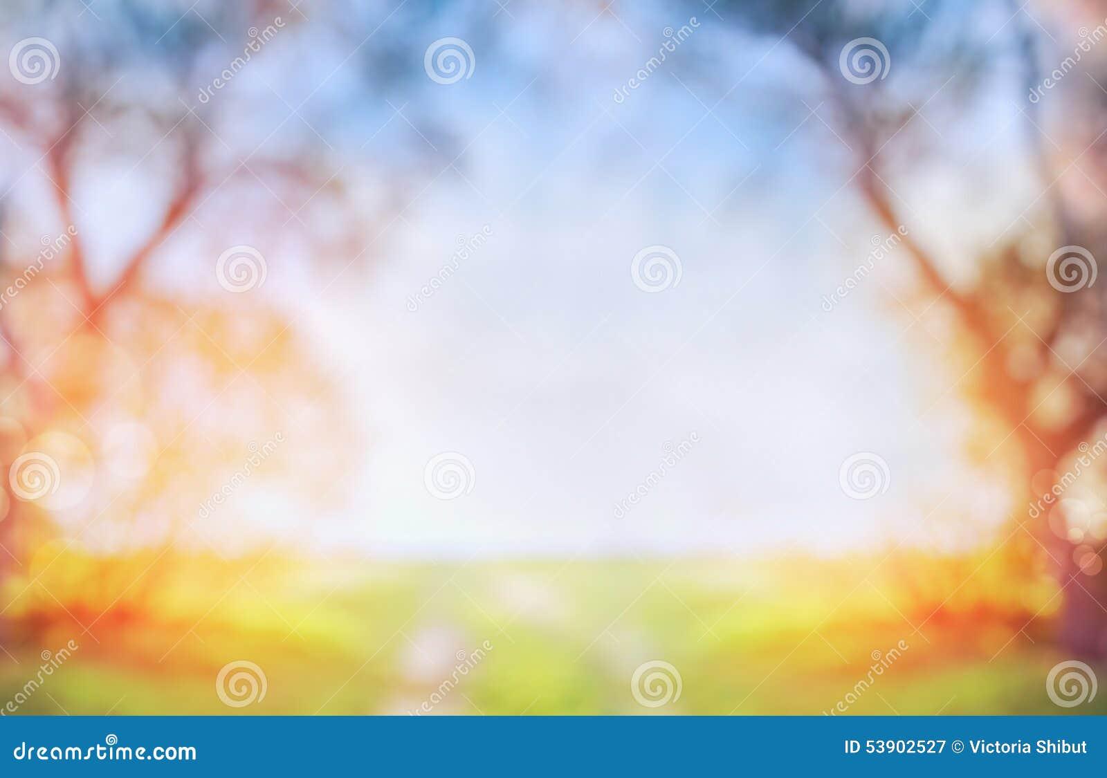 Unscharfer Frühlings- oder Herbstnaturhintergrund mit grünem sonnigem Feld und Baum auf blauem Himmel