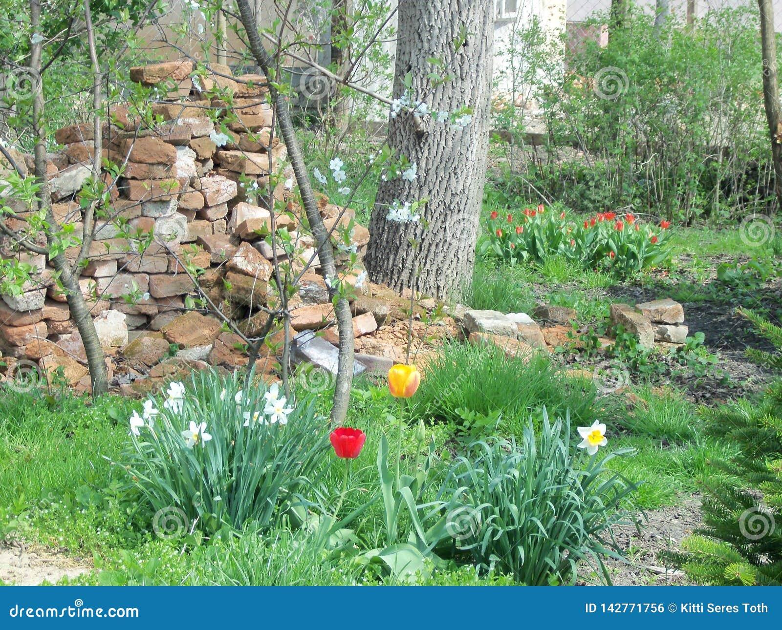 Unser Garten im April 2011