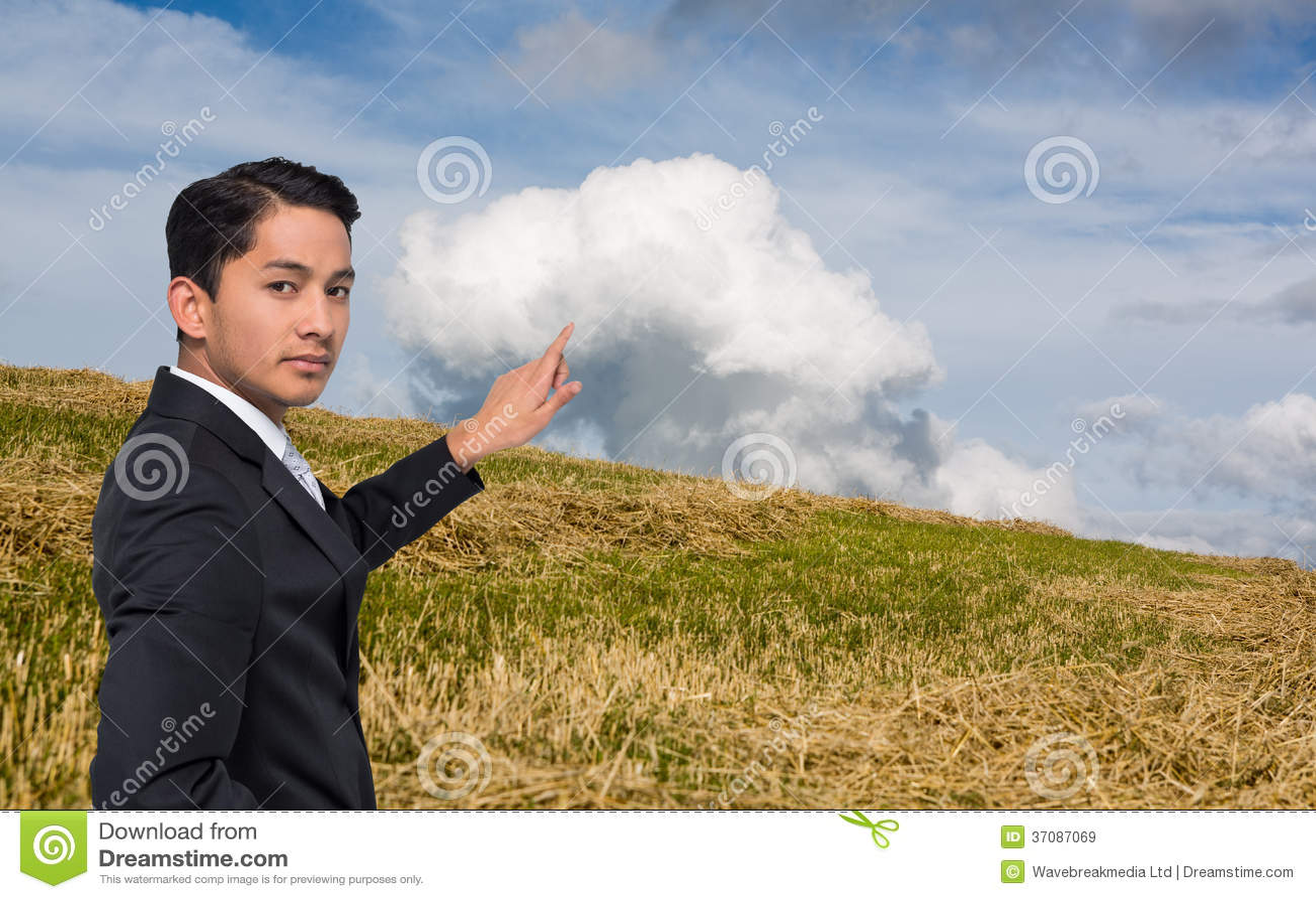 Download Unsmiling Azjatykci Biznesmena Wskazywać Obraz Stock - Obraz złożonej z trawy, ubierający: 37087069