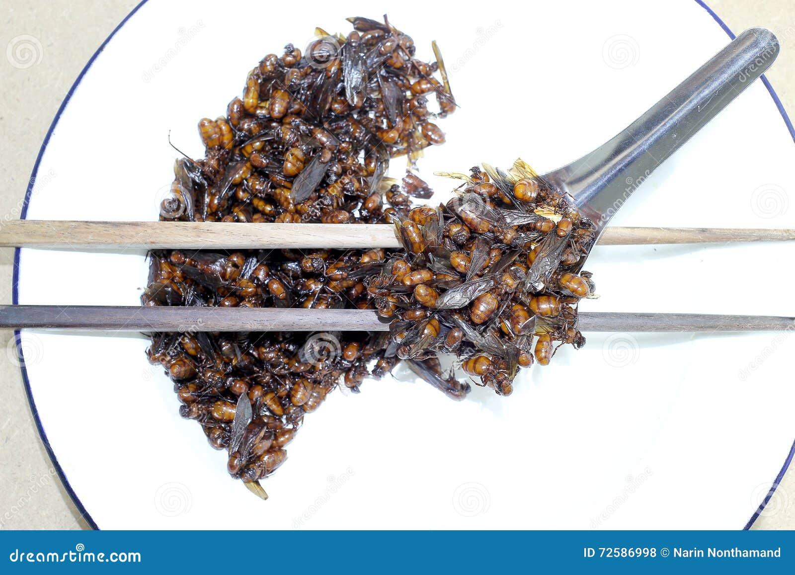 kleine ameisen in der kche kcheninsel fr kleine kche with kleine ameisen in der kche kleine. Black Bedroom Furniture Sets. Home Design Ideas