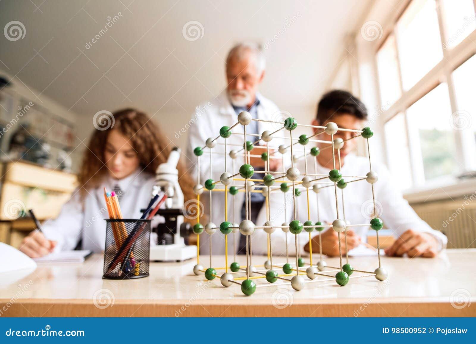 Unterrichtende Biologie des älteren Lehrers zu den hohen Schülern in der Arbeit