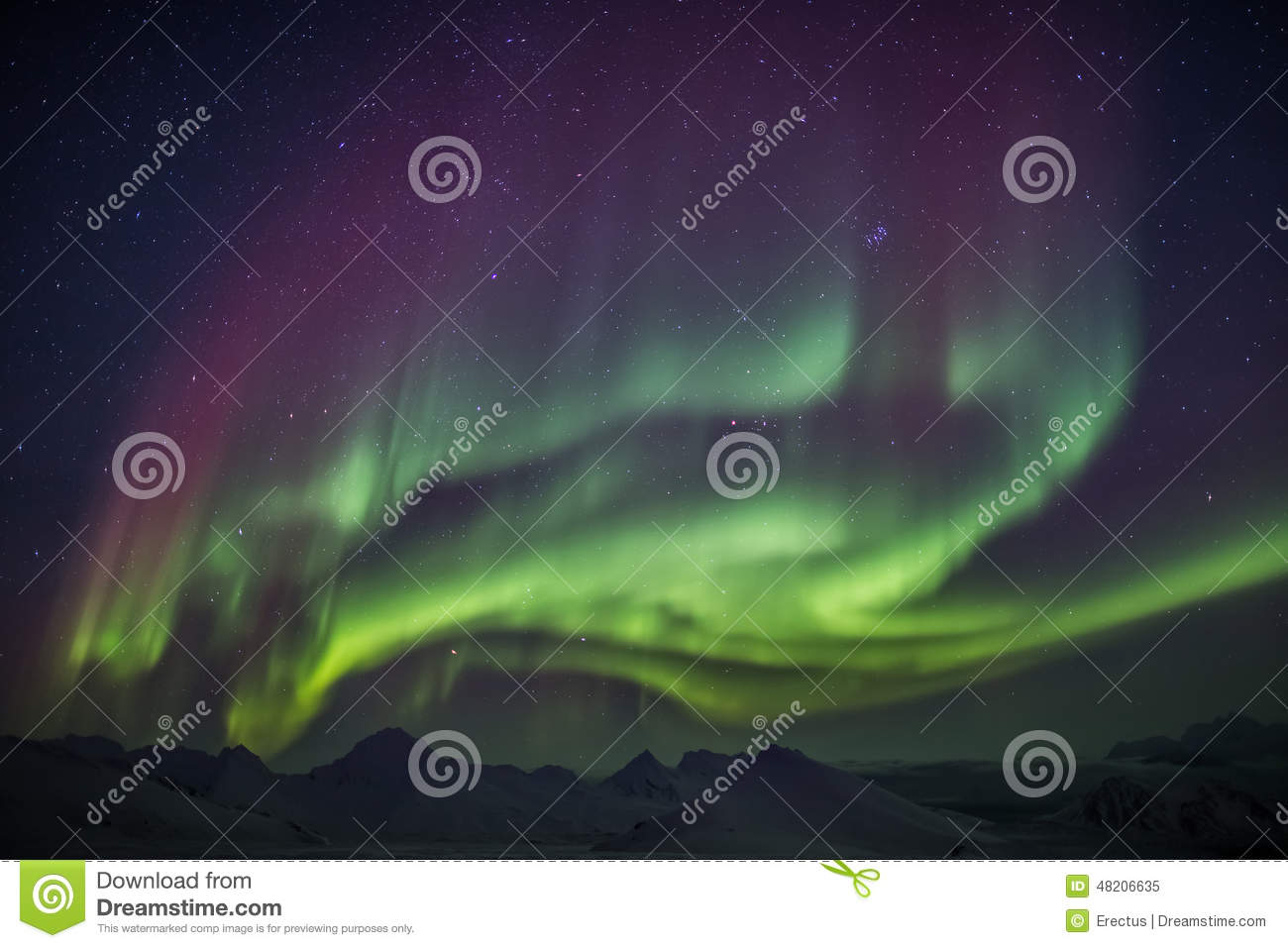 Unusual colorful Northern Lights - Arctic winter landscape