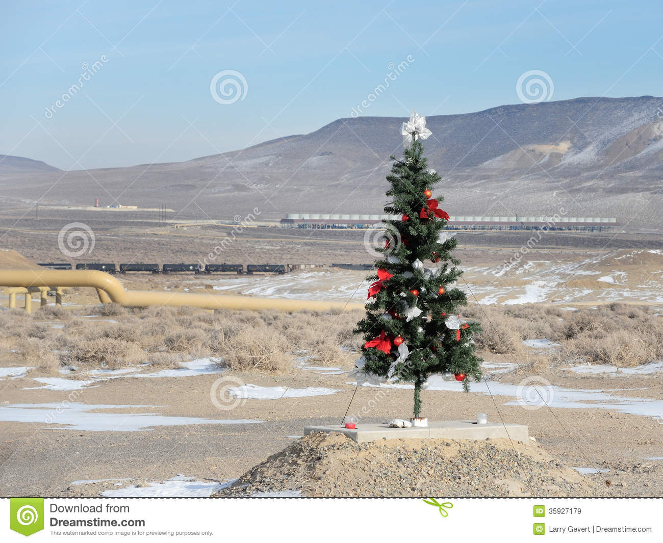 Christmas Tree In The Desert.Unusual Place For A Christmas Tree Stock Image Image Of