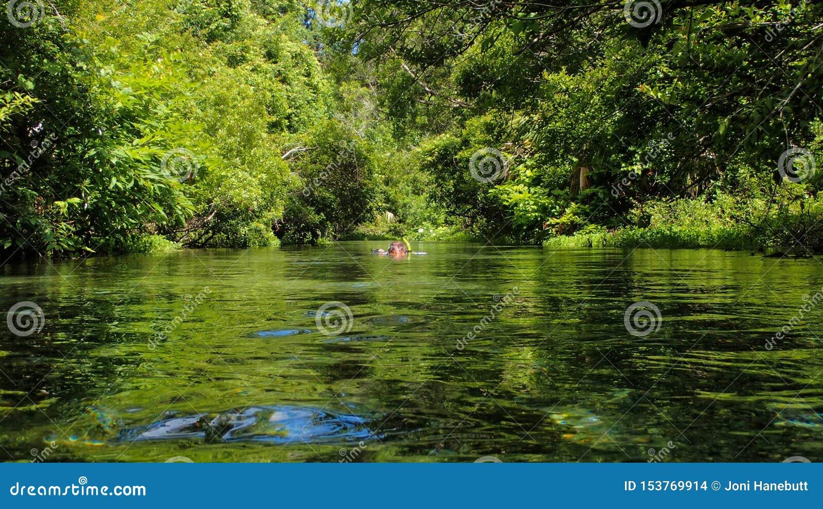 Uomo che si immerge in una molla di Florida