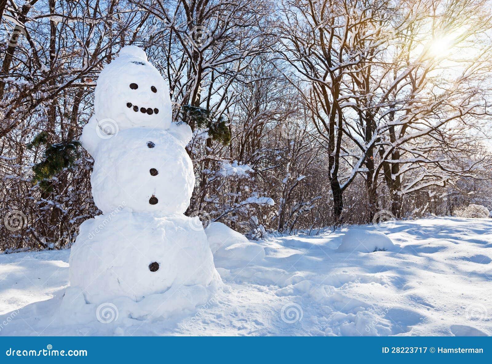 Uomo della neve nella foresta di inverno