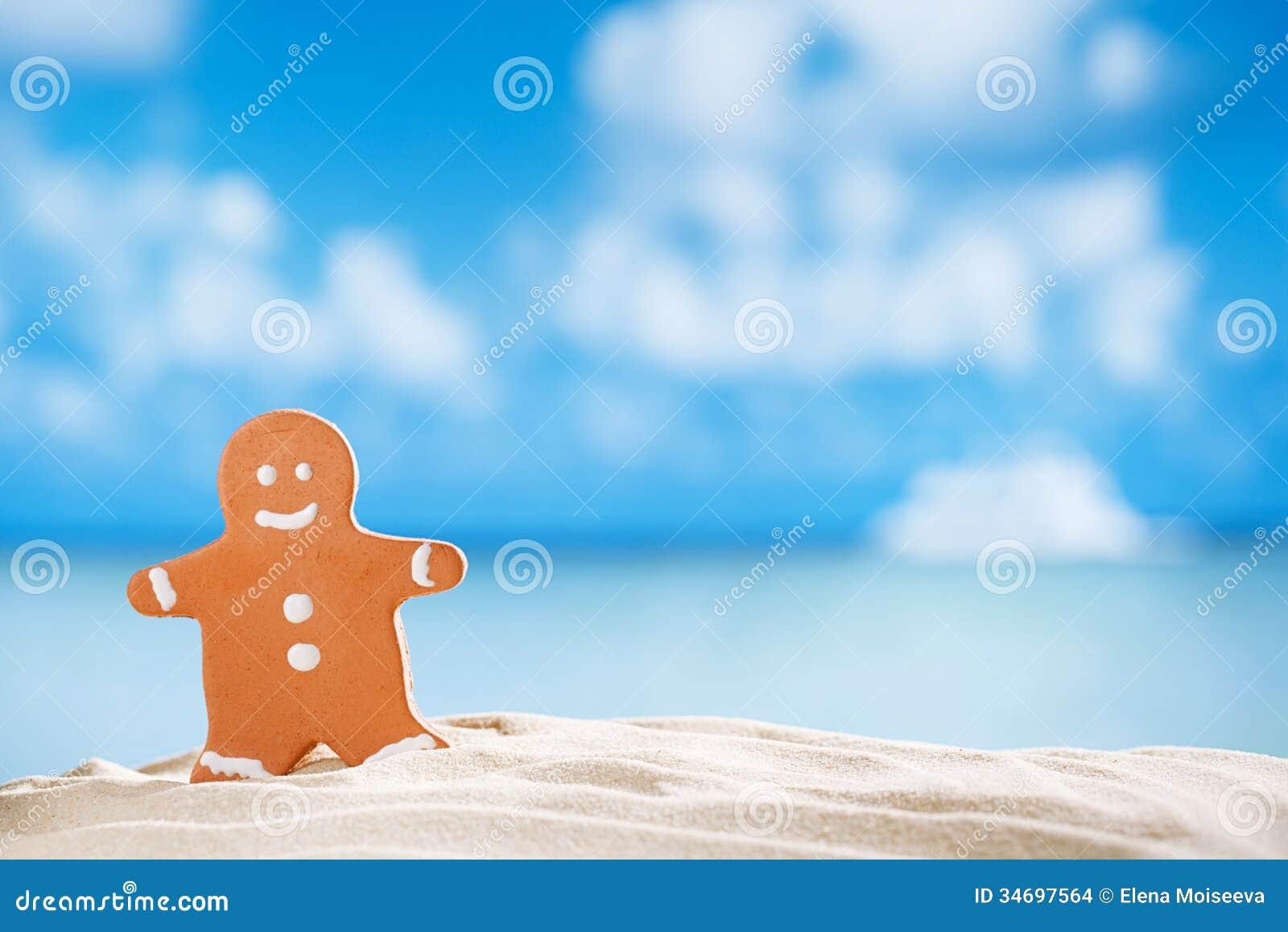 Uomo di pan di zenzero sulla spiaggia con il fondo di vista sul mare