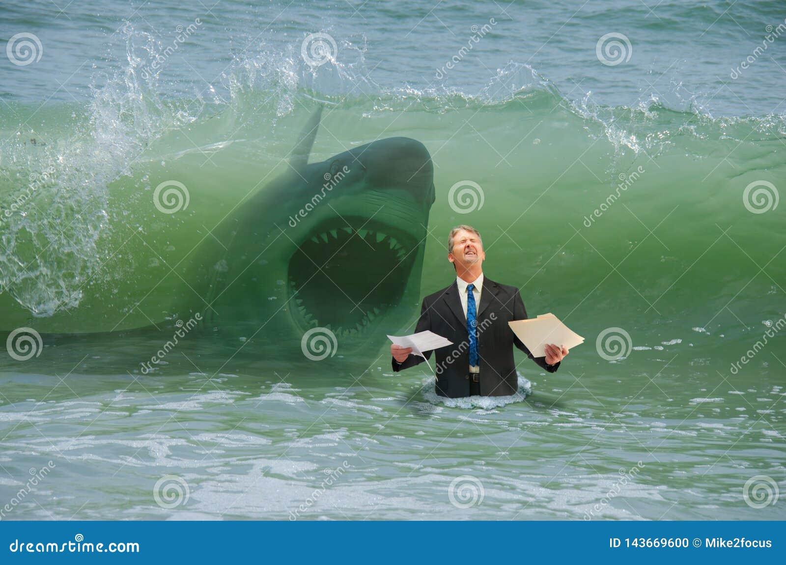 Uomo di pressione di affari che ottiene colpo dall onda con lo squalo d attacco