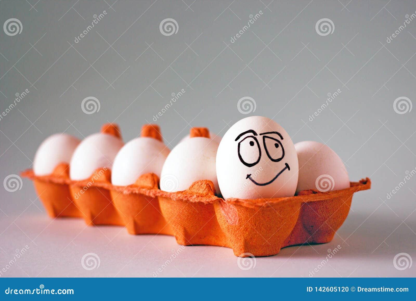 Uova bianche del pollo divertente con i fronti in una cellula dell uovo