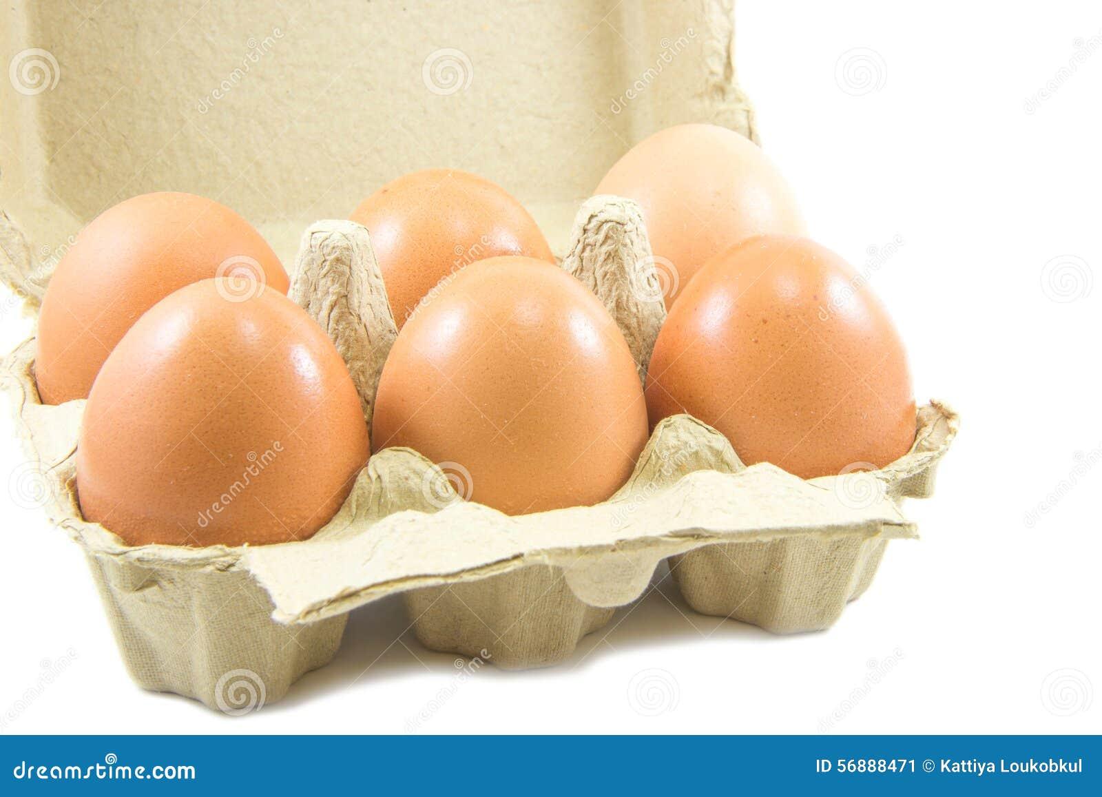 Uova in cartone di carta dell uovo su fondo bianco