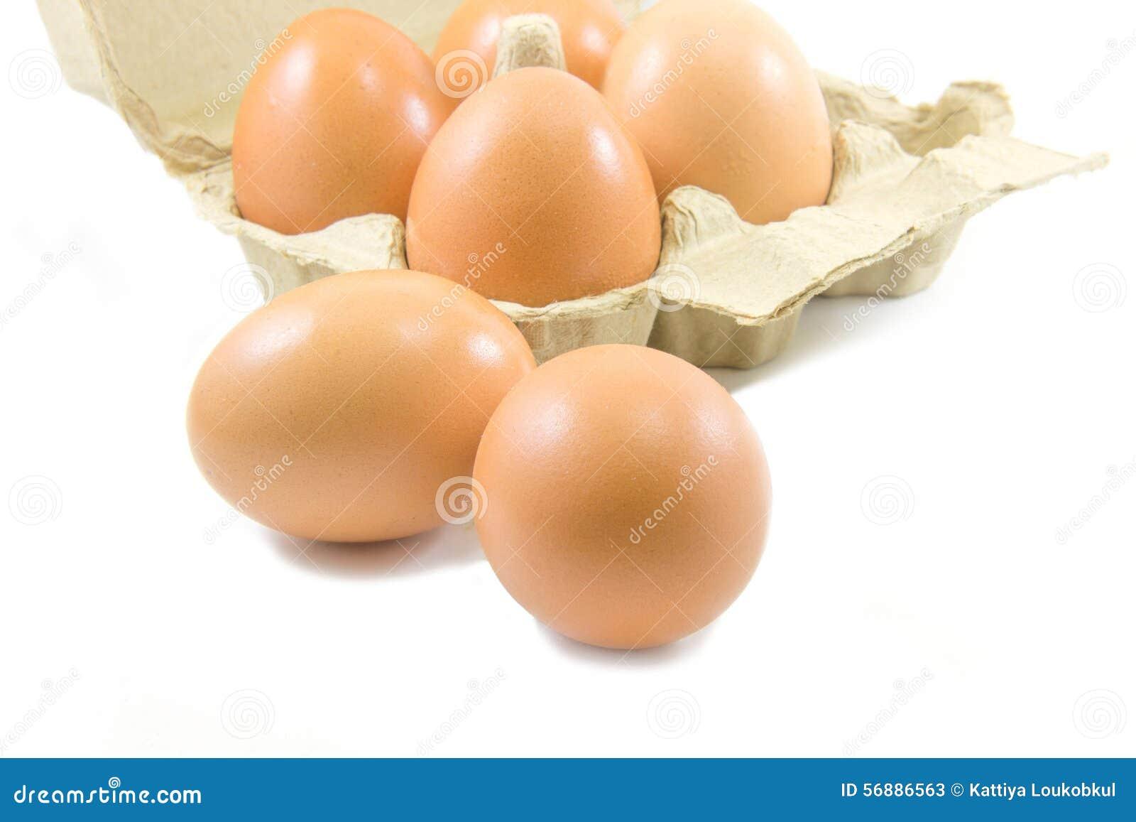 Uova e cartone di carta dell uovo su fondo bianco