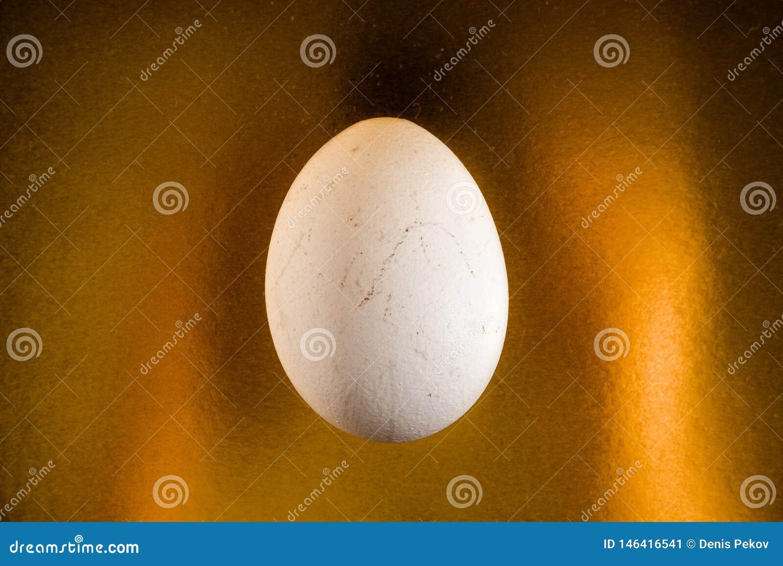 Uovo bianco sul fondo dell oro