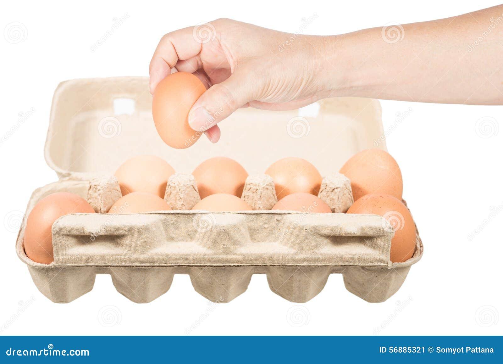 Uovo del pollo