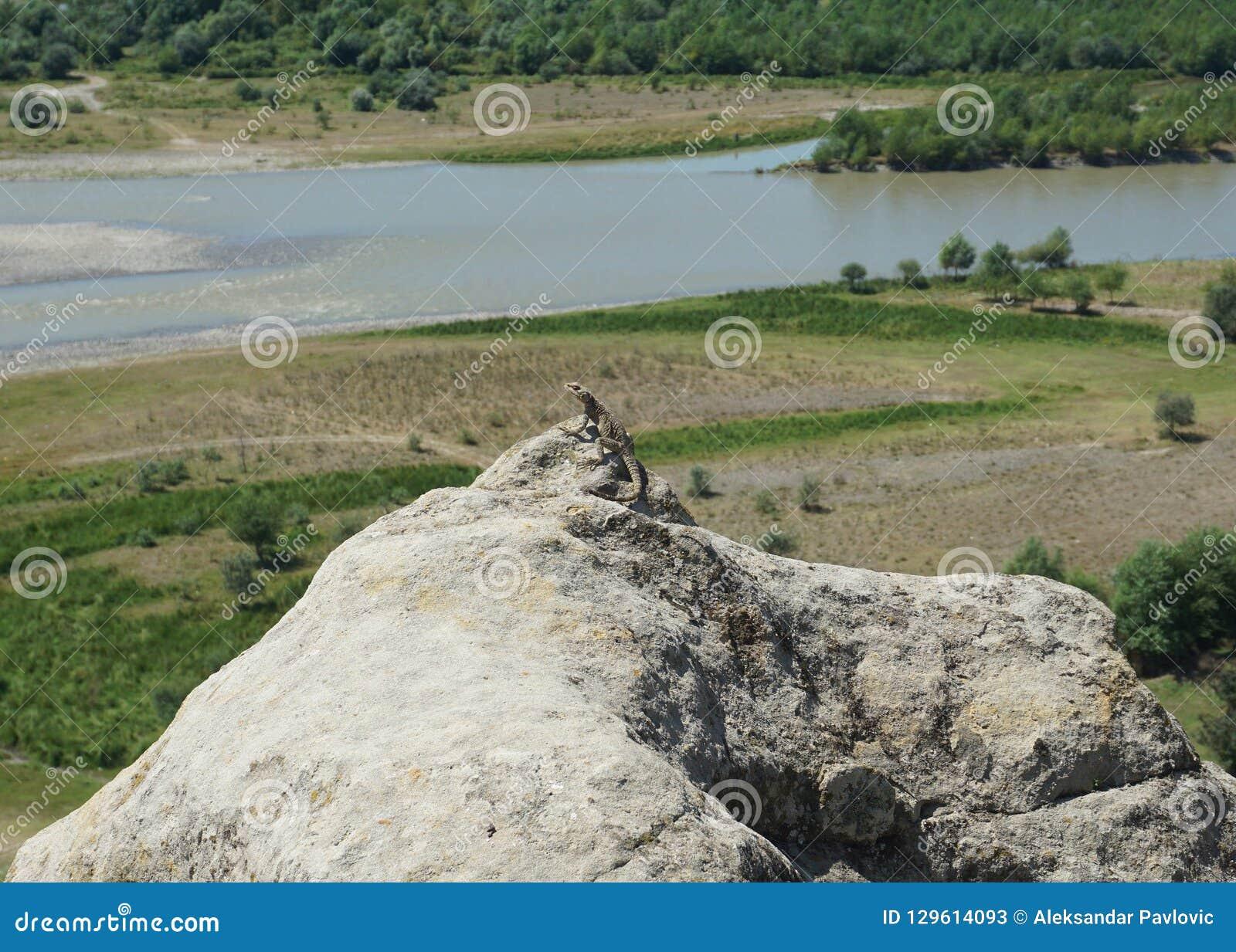Uplistsikhe Stone Lizard on a Peak