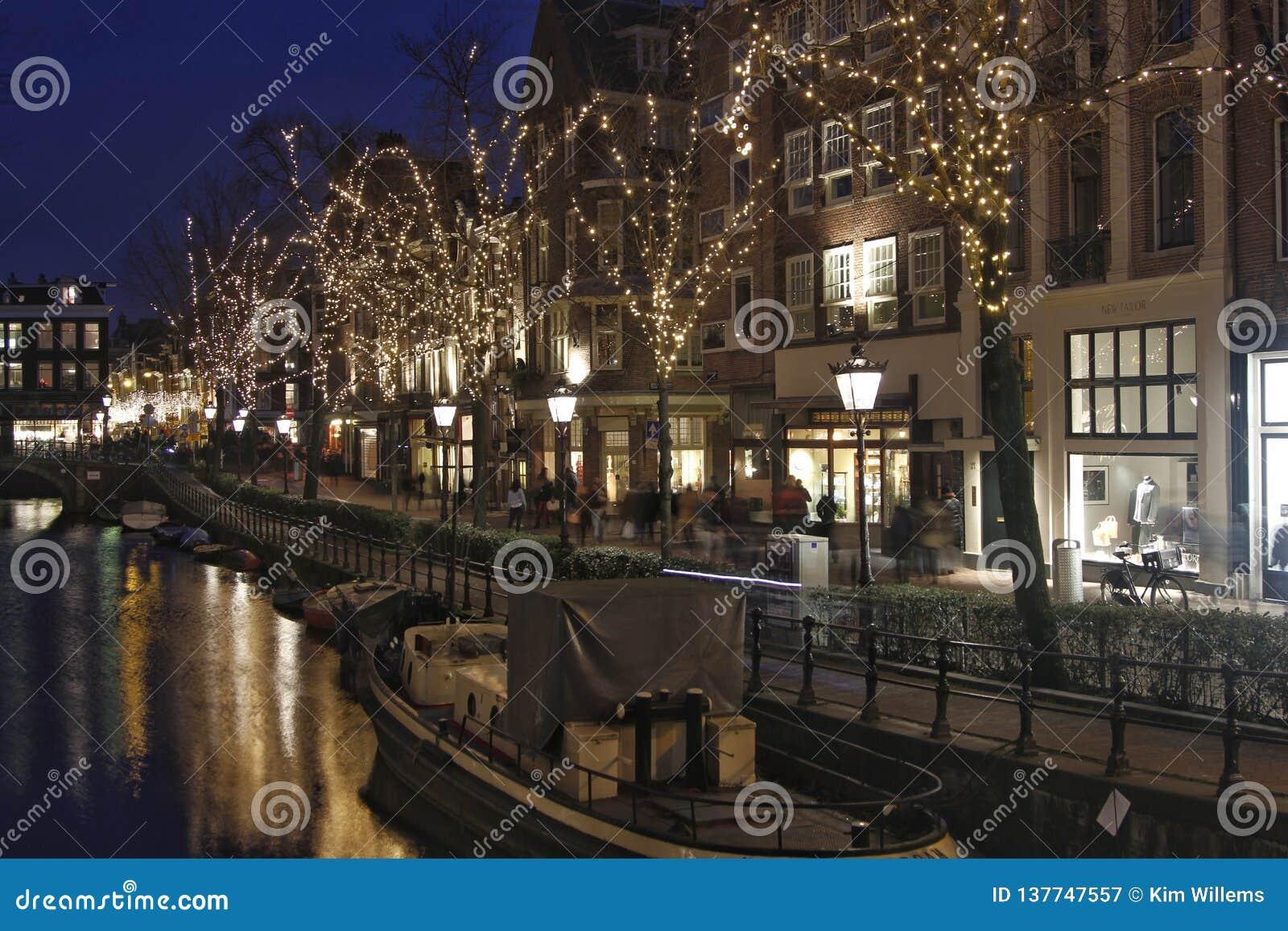 Upplysta träd och gamla fasader i Amsterdam