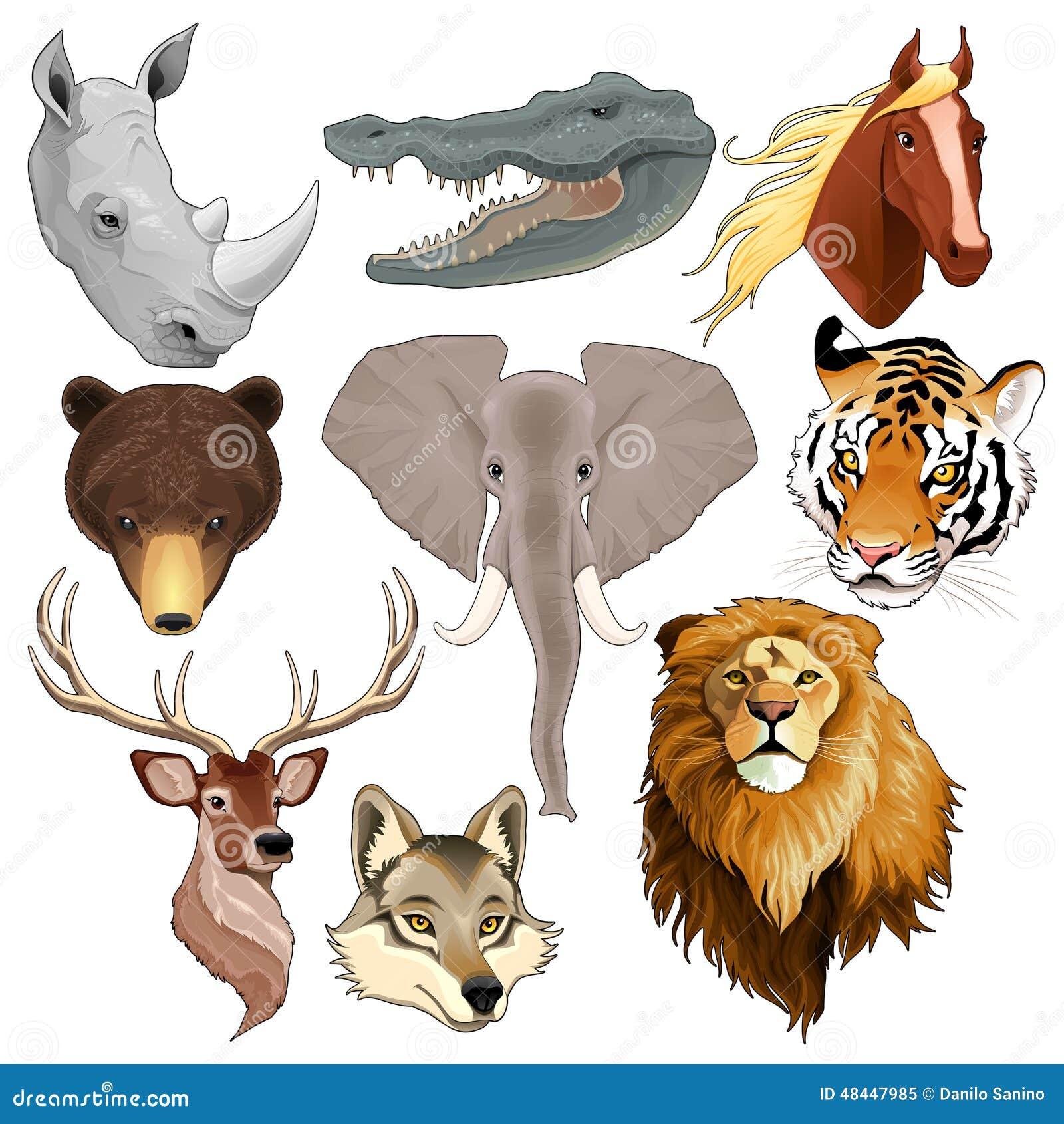 Uppsättning av djura huvud