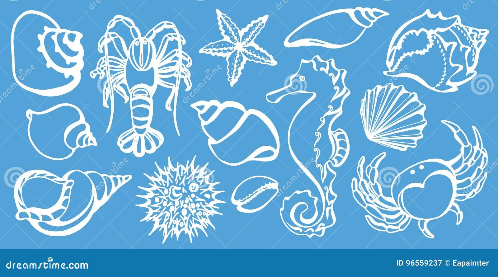 Uppsättning av krabban, havshäst, cancer, snäckskal, havsgatubarn, sjöstjärna Skissa vektorn