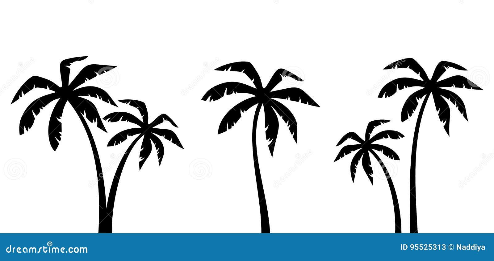Uppsättning av palmträd Svarta konturer för vektor