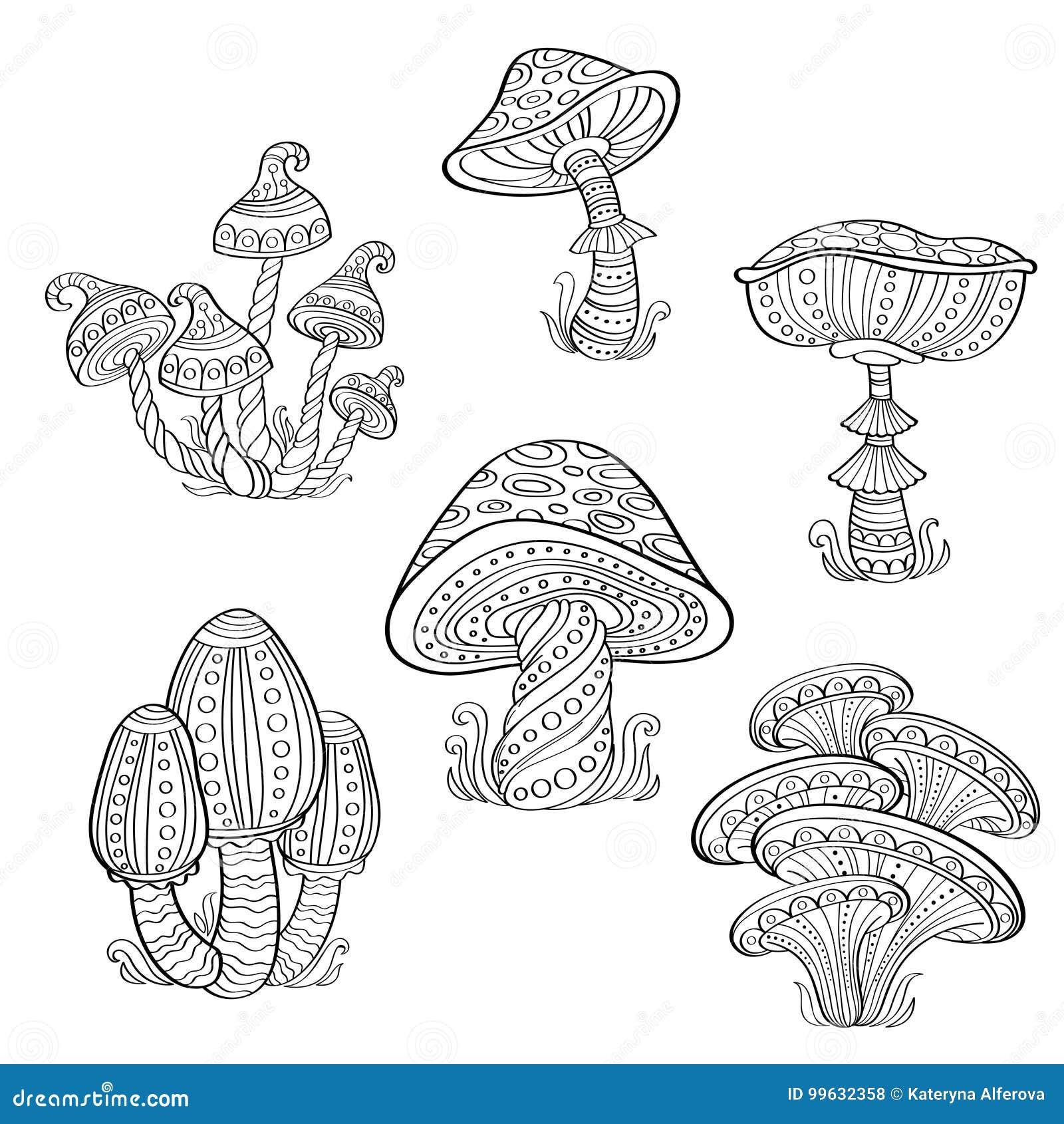 Uppsättning av stiliserade dekorativa champinjoner Linje konstsamling Tatuering för färgläggningdiagram för bok färgrik illustrat