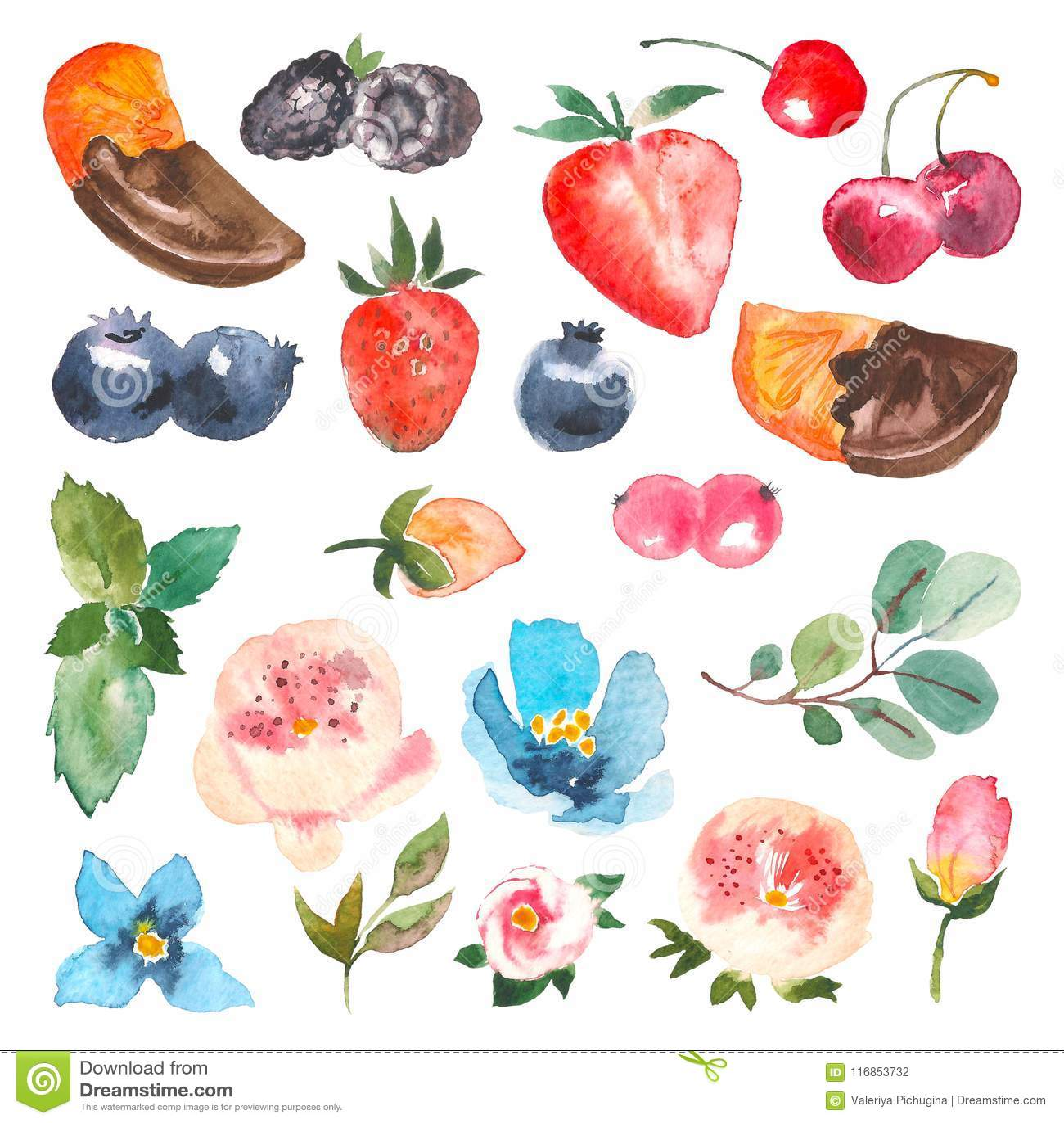 Uppsättning av vattenfärgbär, körsbär, jordgubbe, apelsin i choklad, sidor av mintkaramellen och eucaliptus bakgrundsdesignelemen