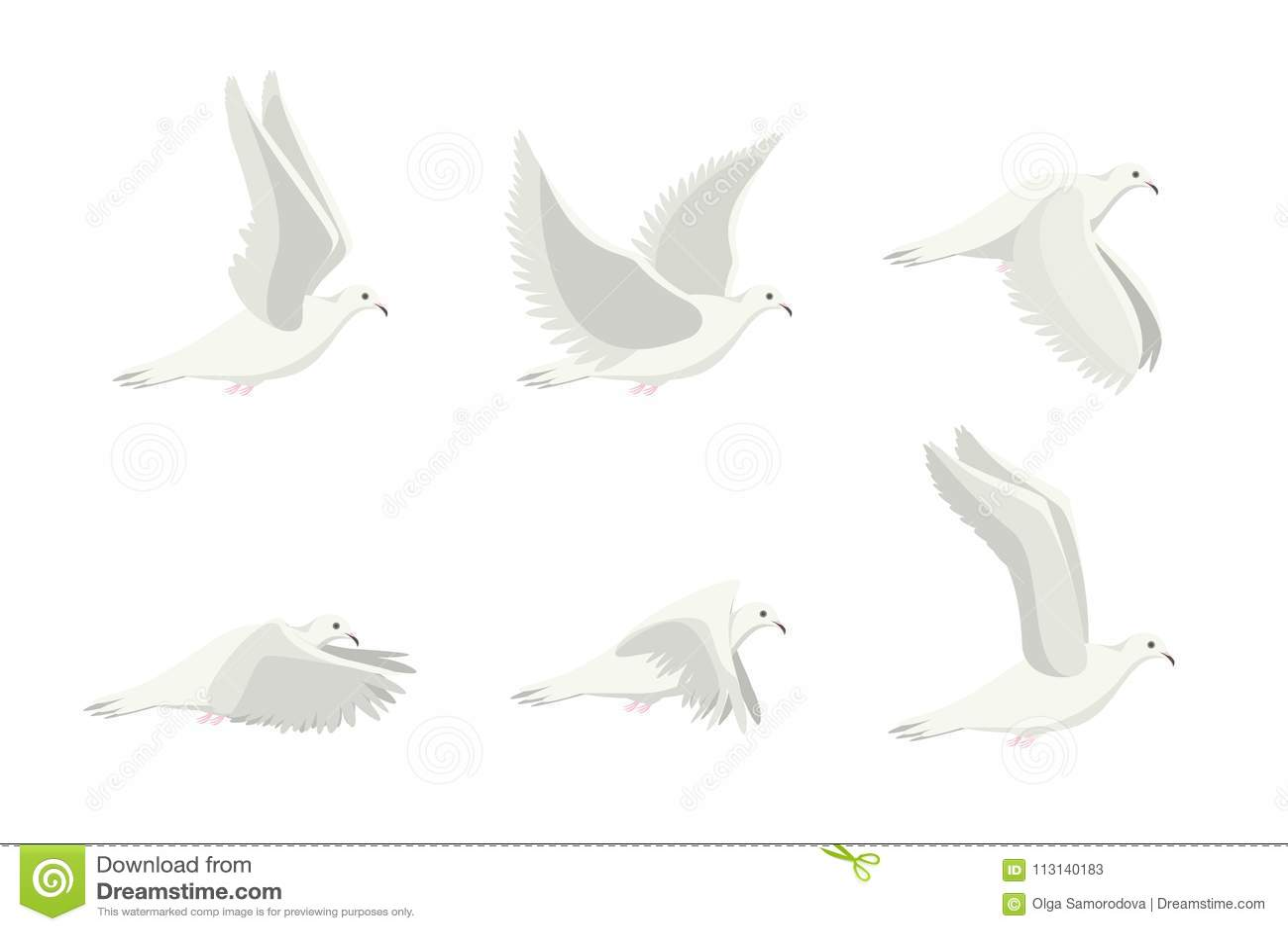 Uppsättning för fågel för tecknad filmvitduva vektor