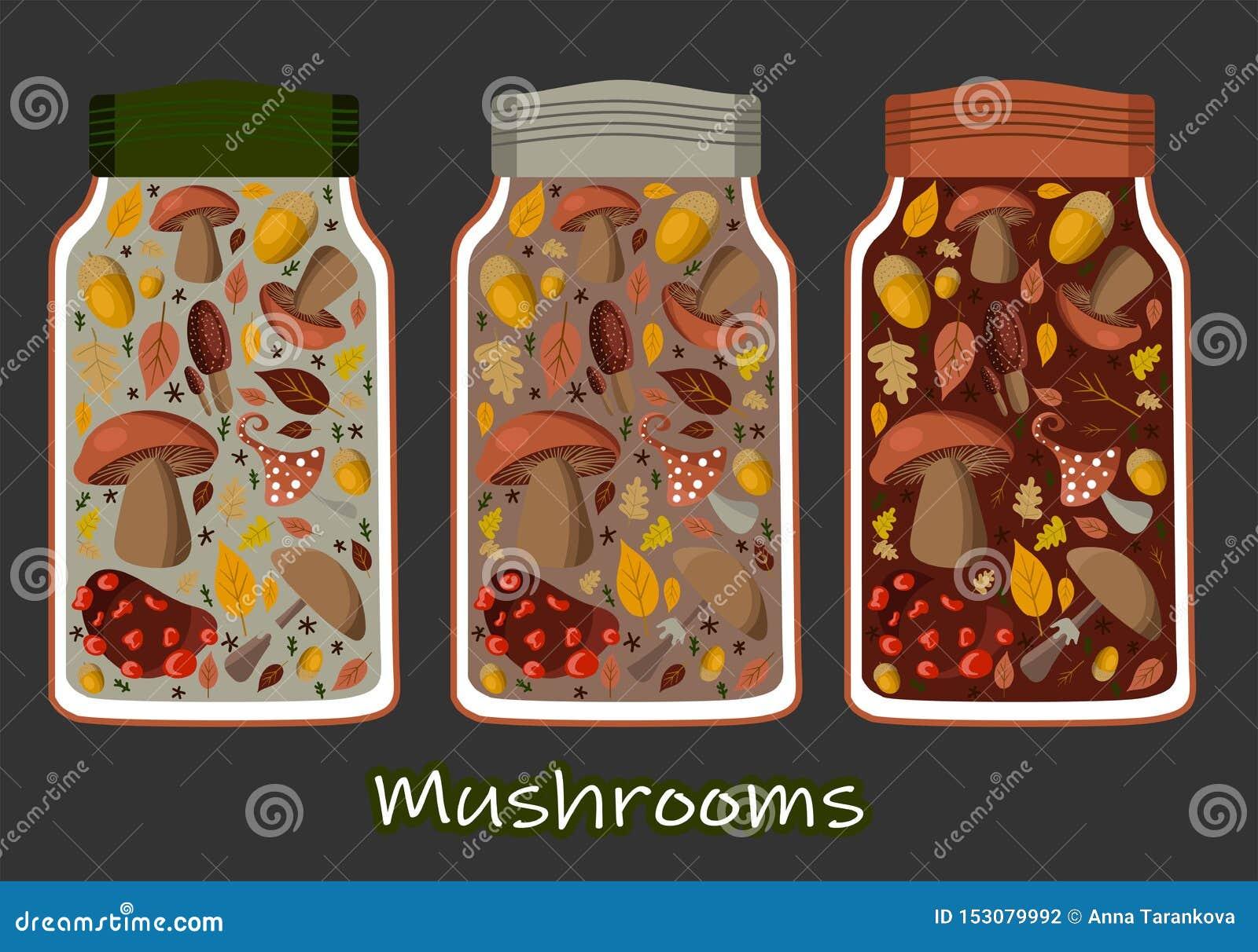 Uppsättning för på burk mat för vektorillustration, samling Tomatsoppa, feg soppa, söta ärtor, guld- havre och champinjoner Metal