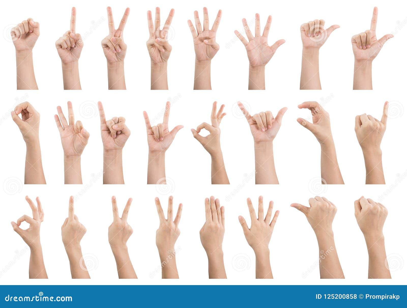 Uppsättningen av olika gester och tecknet av kvinna` s räcker isolerat på whi