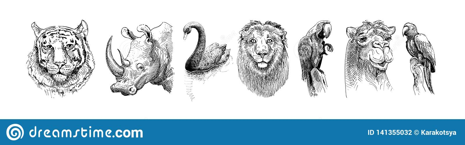 Uppsättningen av safarihuvuddjur som är svartvit skissar teckningen
