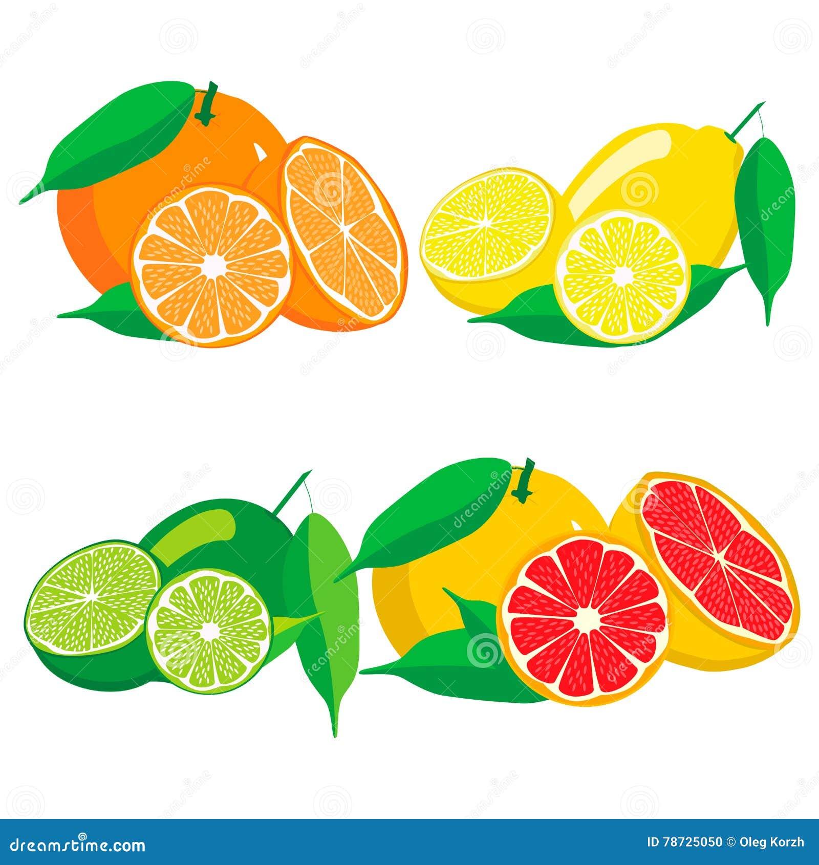 Uppsättningen bär frukt orange grapefruktcitronlimefrukt