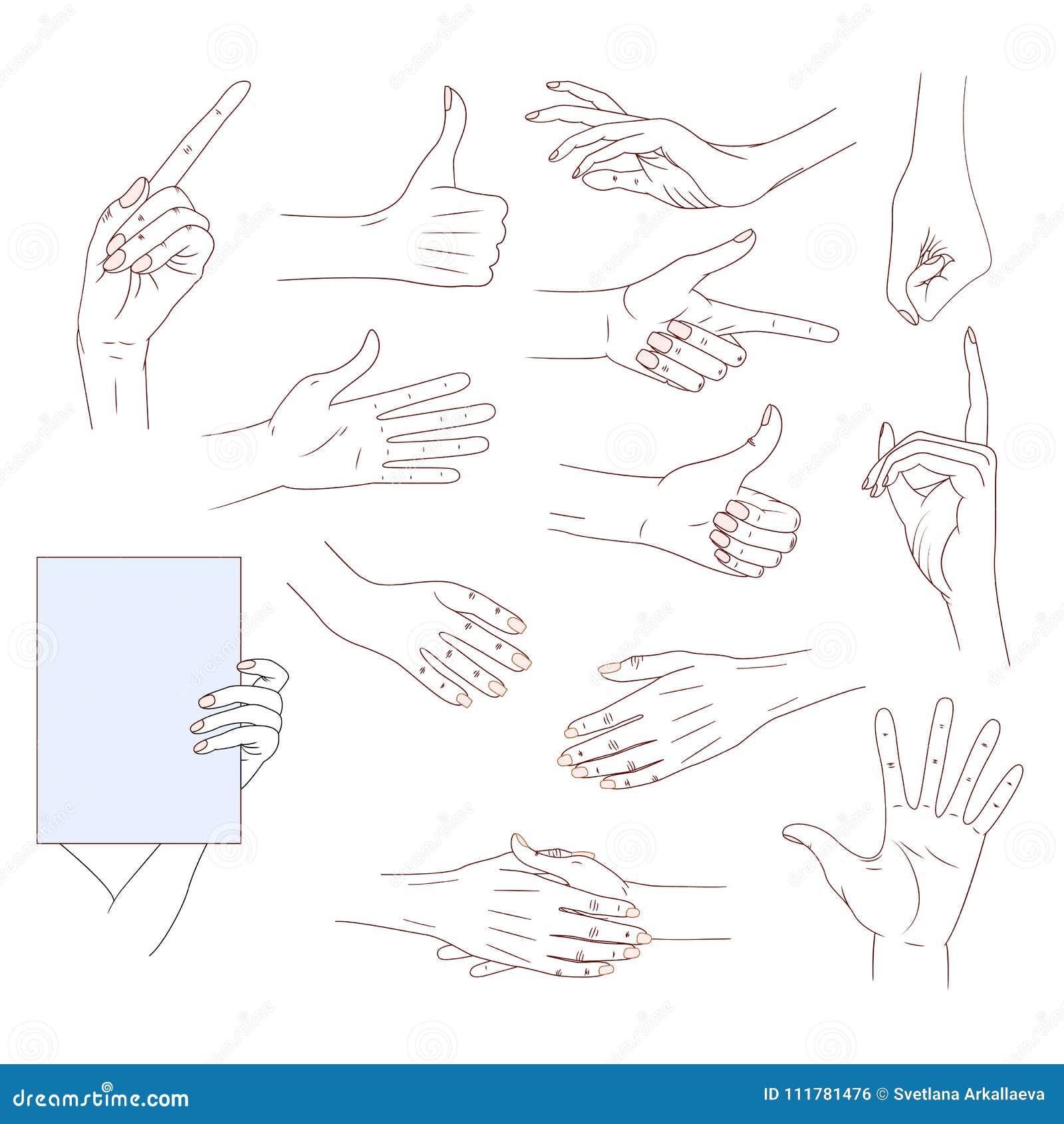 Uppsättninghänder i olika gester som isoleras på vit bakgrund bra hudvektorlinje illustration Samlingssinnesrörelser