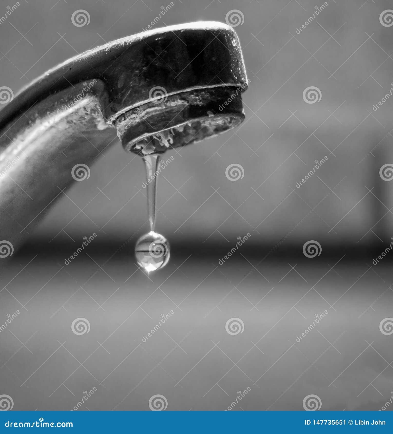 Uratuj wody