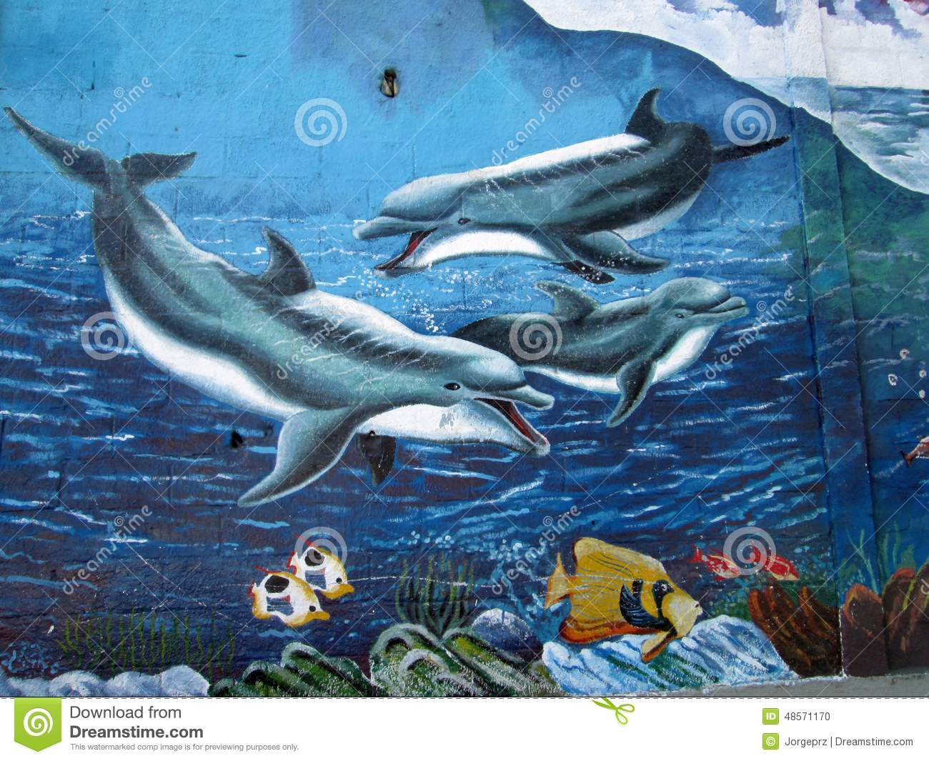 urban art dolphins editorial image image 48571170 editorial stock photo