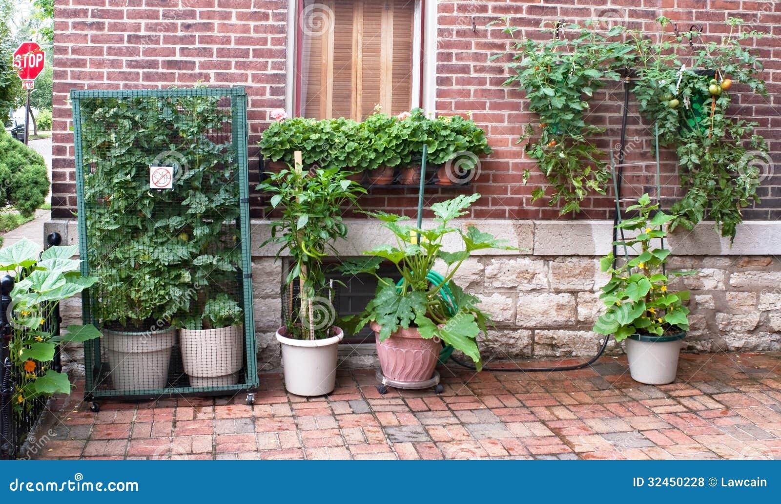 Urban Court Vegetable Garden