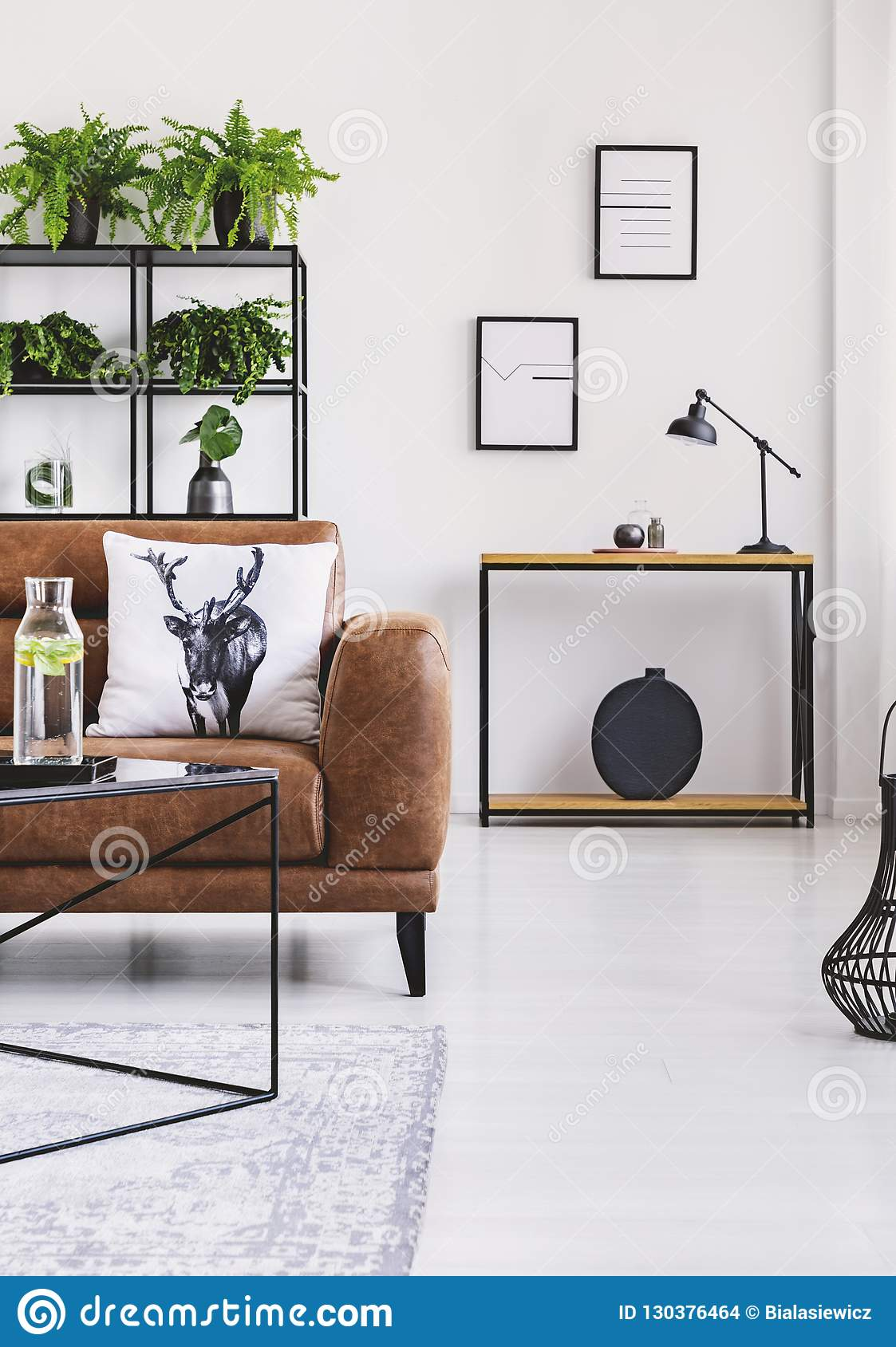 Urban jungle in modern home interior. Pots with plant on a shelf behind leather sofa.