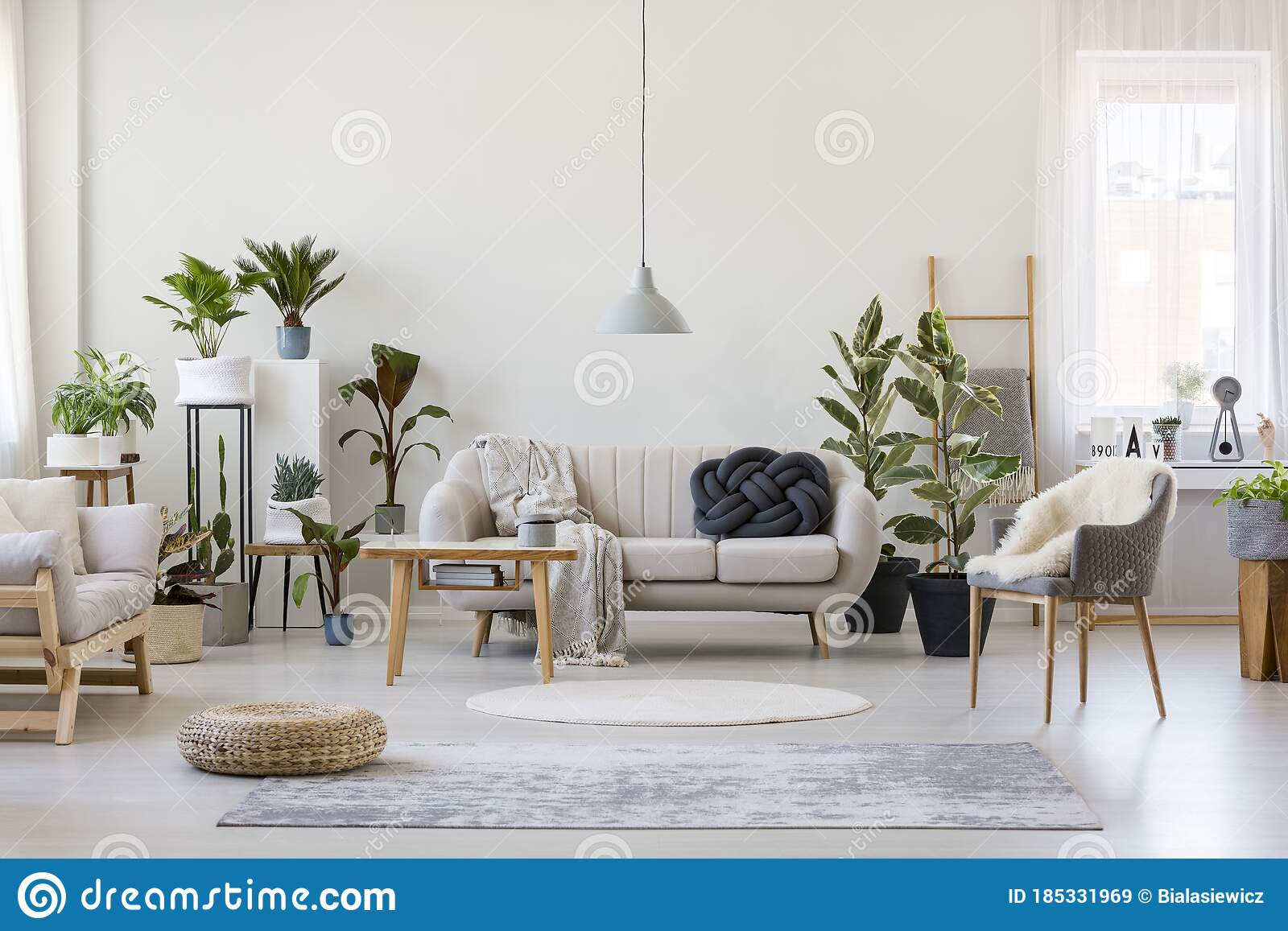 Urban Jungle In Stylish Room Interior With White Couch With Black Knot Pillow And Wooden Furniture Copy Space On Empty Stock Image Image Of Knot Apartment 185331969
