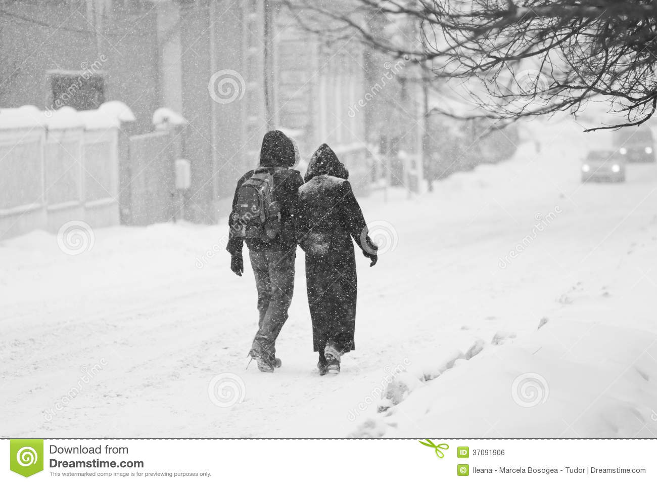 walking in the snow - photo #6