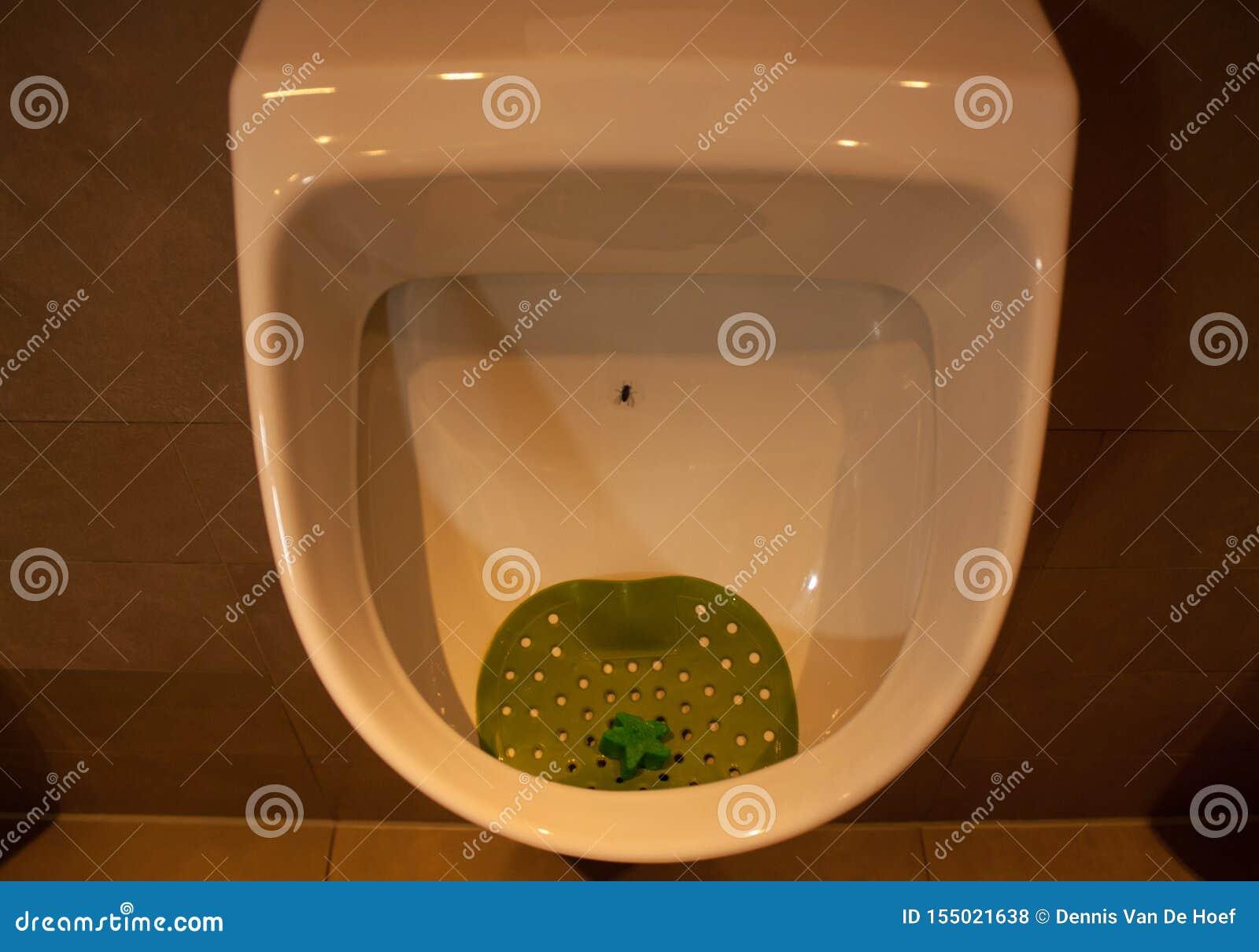 An urinoir/urinal in a public toilet.