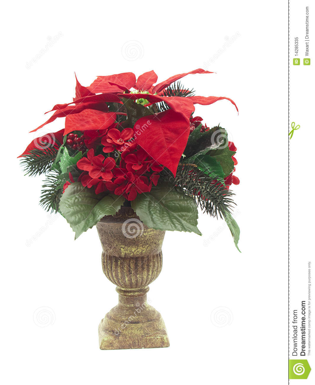 Urn With Christmas Flower Arrangement On White Stock Image Image Of Arrangement Ornamental
