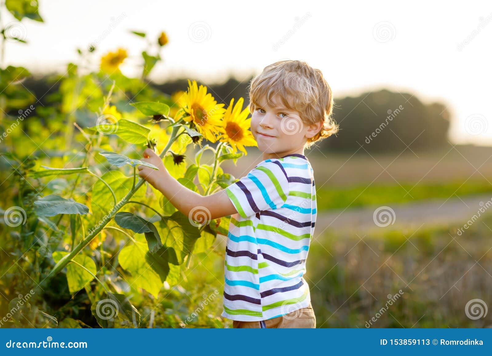 Urocza ma?a blondynu dzieciaka ch?opiec na lato s?onecznika polu outdoors ?liczny preschool dziecko ma zabaw? na ciep?ym lato wie