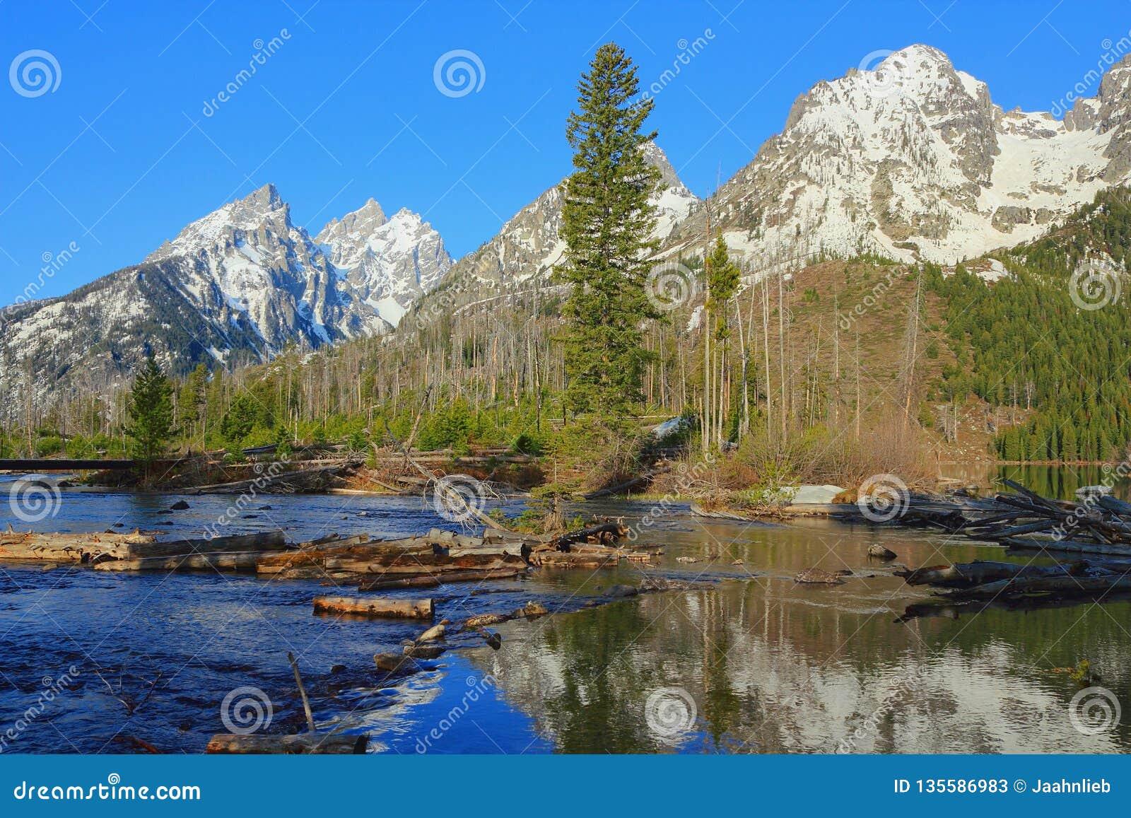 Uroczysty Teton pasmo odbijał w gwałtownych przy końcówką Smyczkowy jezioro, Uroczysty Teton park narodowy, Wyoming