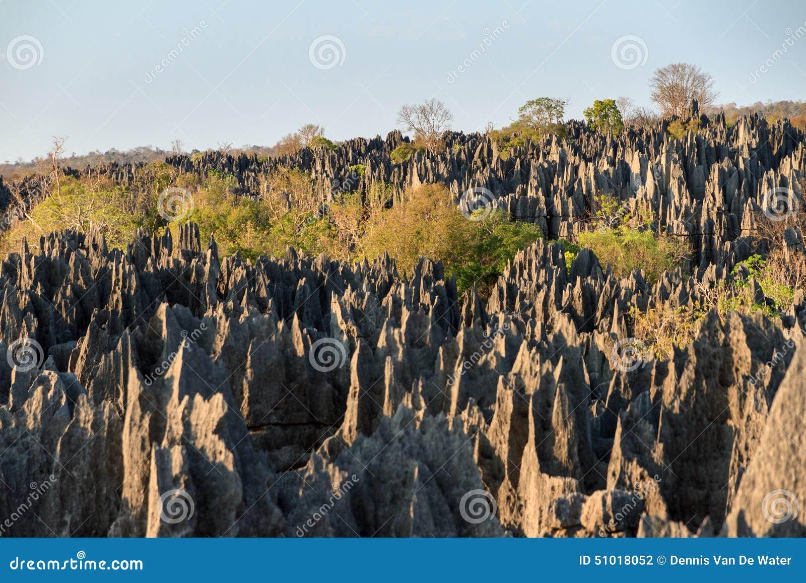 Uroczysty Tsingy De Bemaraha